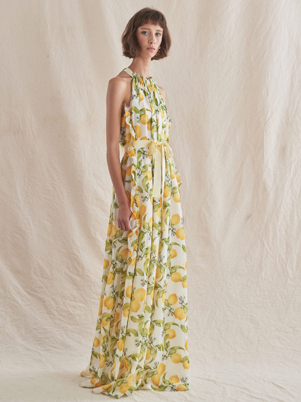 Amelia Dress | Lemons