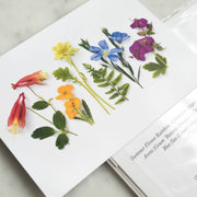 Floral Rainbow Card by Bottle Branch