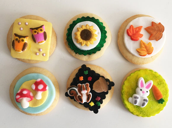 Woodland Creatures Cookie Kit - 6 Sugar Cookies
