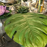 Tropical Monstera Leaf Placemats and Coasters (Set of 6)