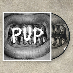 PUP SELF TITLED LP