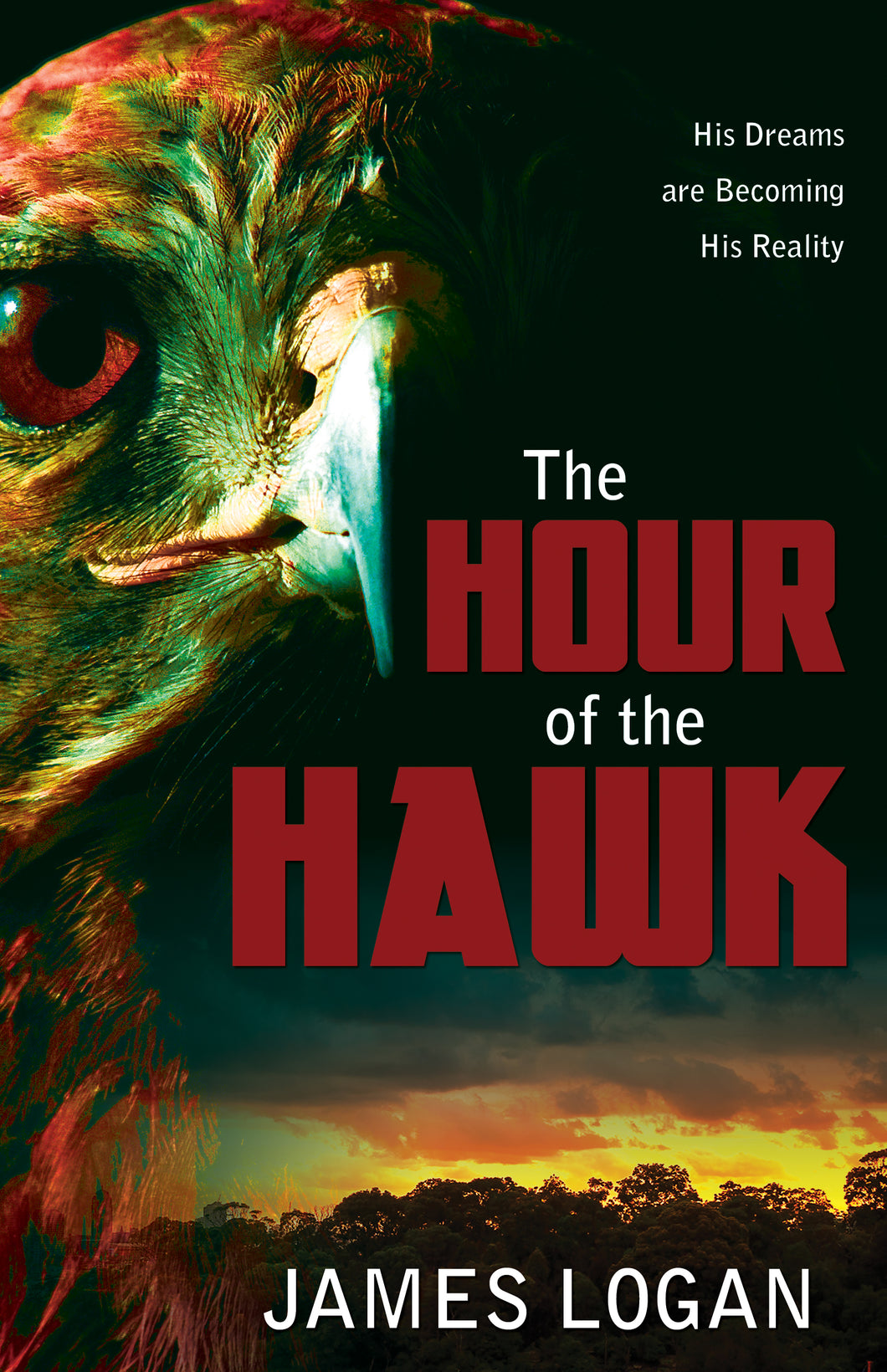 The Hour of the Hawk:<br><small>A Novel</small>