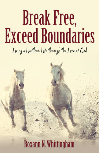 Break Free, Exceed Boundaries: <br><small>Living a Limitless Life through the Love of God</small>