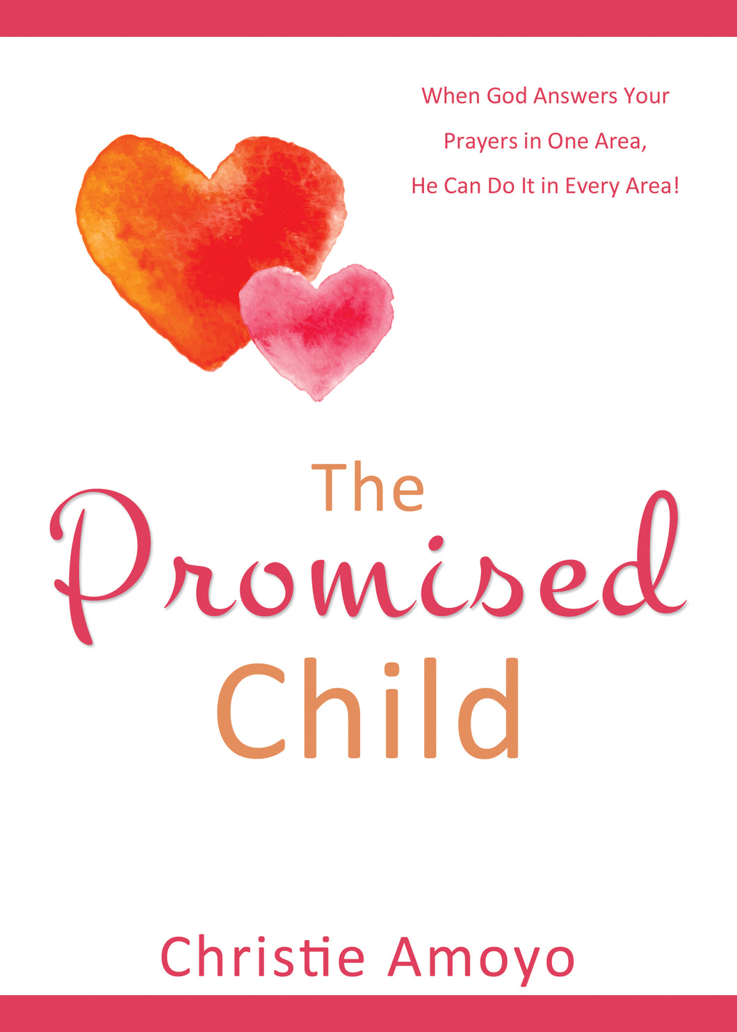 The Promised Child:<br><small>When God Answers Your Prayers in One Area, He Can Do It in Every Area!</small>