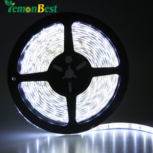 RGB LED Waterproof String Light