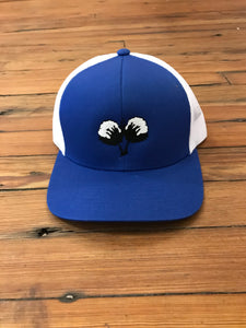 S/Roots Cotton Hat-Royal/White