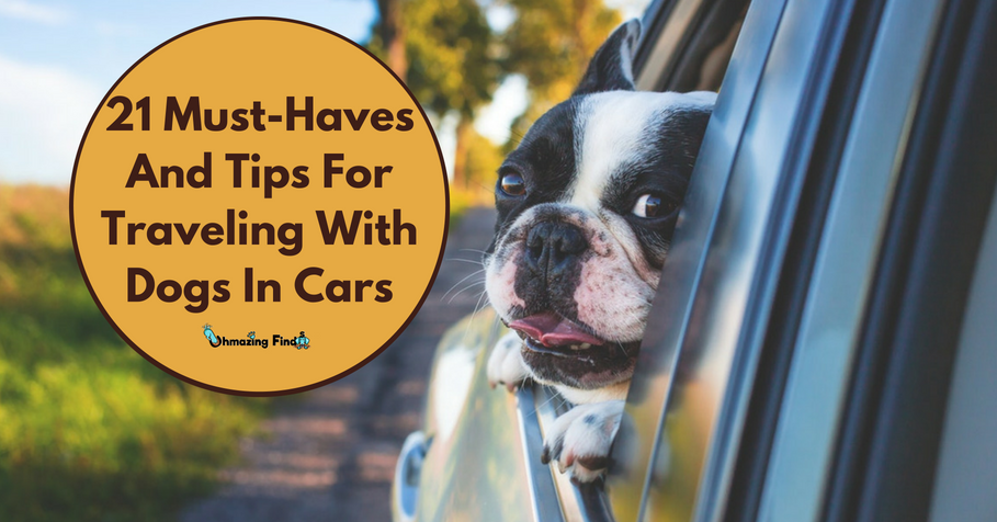 21 Must-Haves And Tips For Traveling With Dogs In Cars-With Checklist