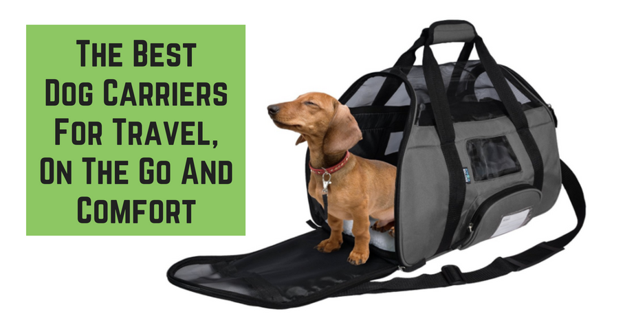 The Best Dog Carriers For Travel, On The Go And Comfort