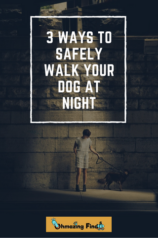 3 Ways To Safely Walk Your Dog At Night