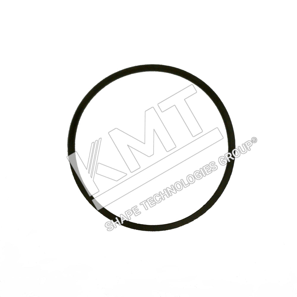Gasket, Canister, Low Pressure Water Filter