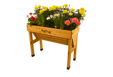 Wall Hugger VegTrug - Small