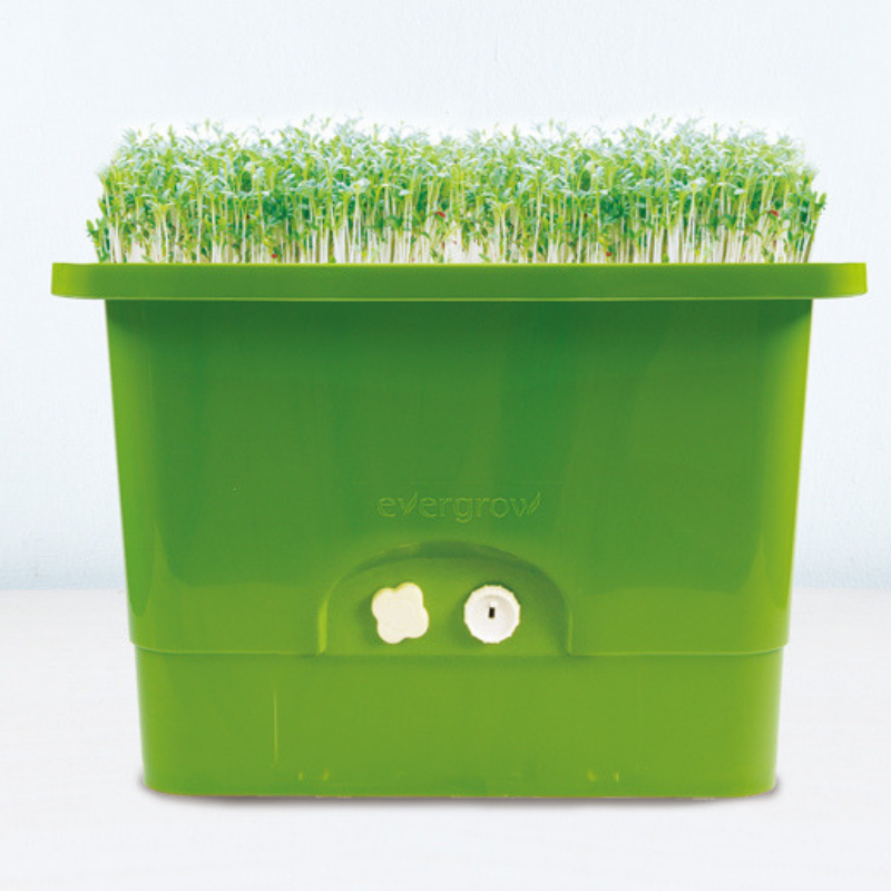 Sprout Grower For All-In-One Self-Watering Planter