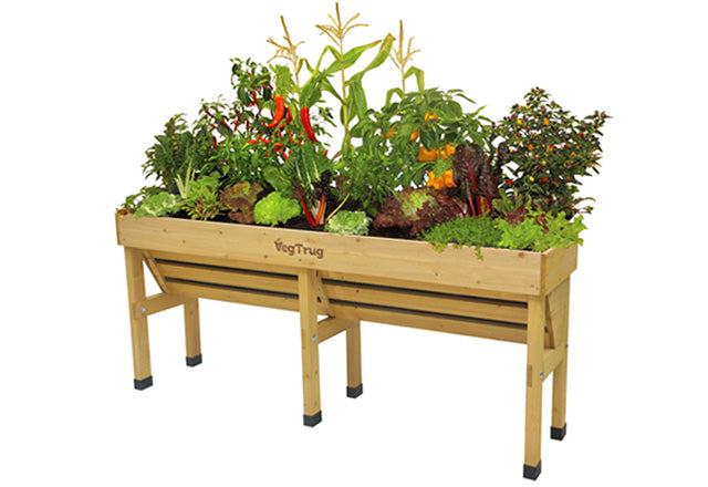 Wall Hugger VegTrug - Medium