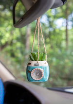 Mini Hanging Succulent