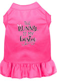 Bunny Is My Bestie Screen Print Dog Dress Bright Pink Xxxl (20)-Pristine Pups