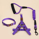 Dog Harness Leash Leads Dog-Collar Pet Accessories Puppy Vest Dog Harness Leash For Animals-Pristine Pups