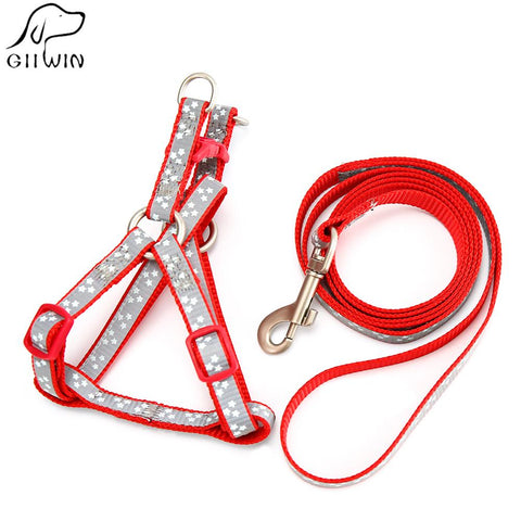 Dogs Leashes Sets For Small Pet Dogs Leash With Luminous Star Leashes All Seasons Breakaway-Pristine Pups