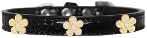 Gold Flower Widget Croc Dog Collar Black Size 10-Pristine Pups