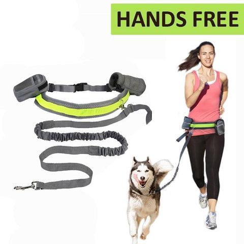 Hands Free Dog Leash-Pristine Pups