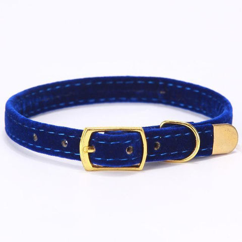 Nylon Adjustable Dog Collar-Pristine Pups