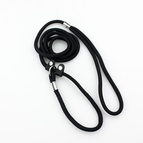 Safety Dog Leash-Pristine Pups