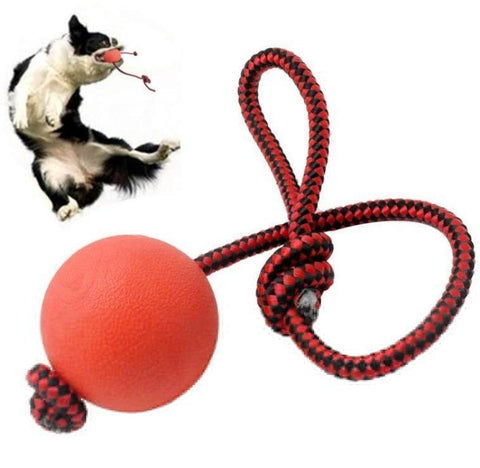 Solid Rubber Dog Chew Training Ball Toys Tooth Cleaning Chew Ball Puppy Pet Play Training Chewing-Pristine Pups