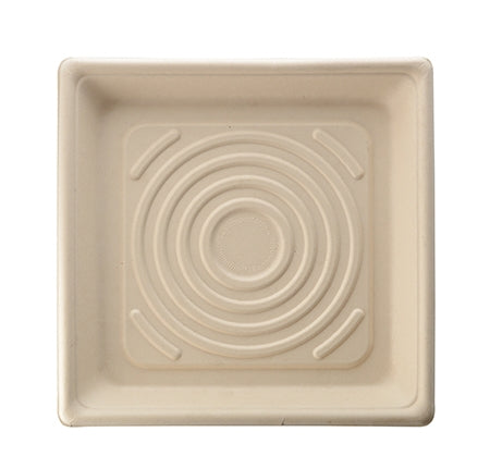 "10.25"" COMPOSTABLE SQUARE TRAY - 1.2"" (200/Case)"