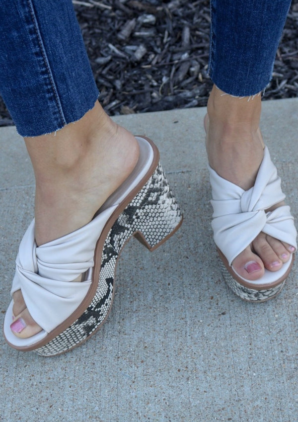 Morgan Chunky Heel Shoe ~
