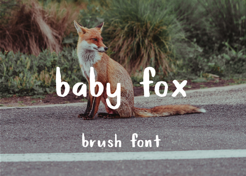 Baby fox brush font
