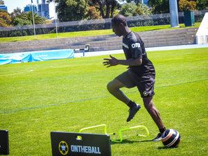Agility Hurdle - On The Ball Global