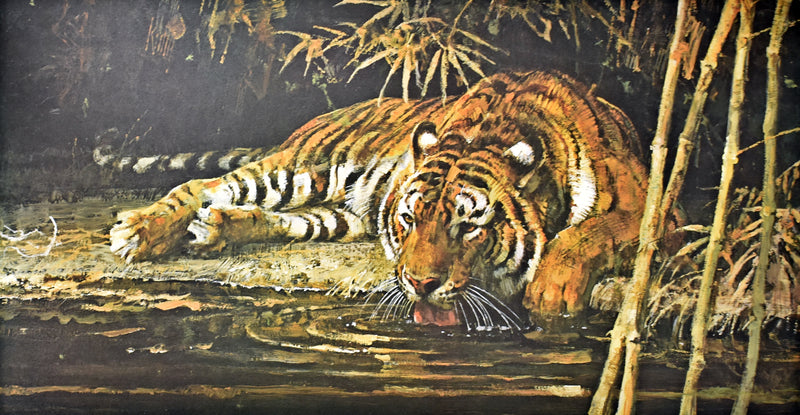 "Bob Kuhn Artist-Signed & Numbered ""Drinking Tiger"" Print 1980"