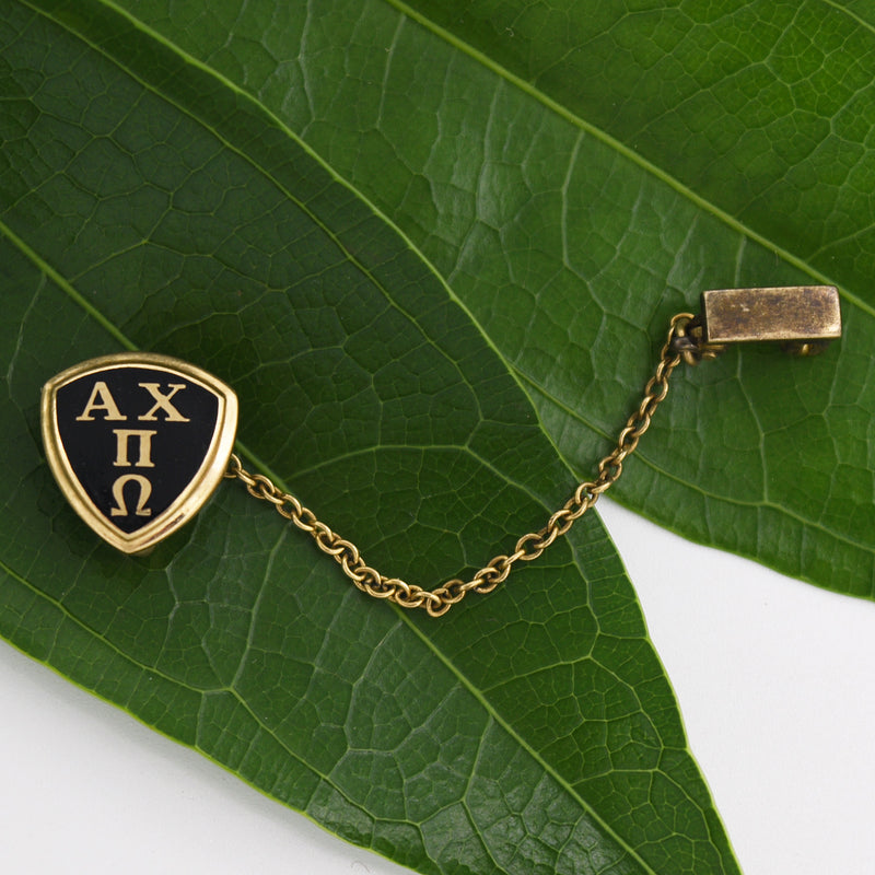 10k Yellow Gold Antique Enamel Alpha Chi Pi Omega Pin