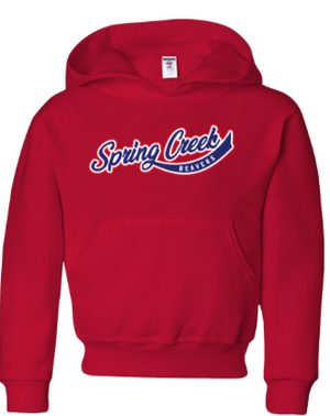 SCE - Youth Vintage Font Hooded Sweatshirt *Available in 3 Color Options
