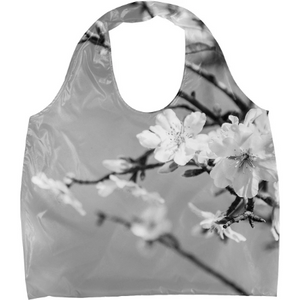 Black and White Spring Cherry Tree Flowers - ARTPICS