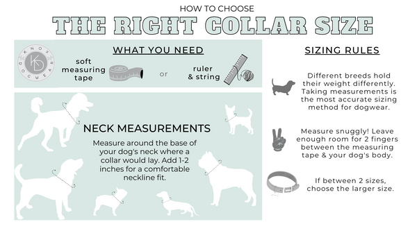 Directions for properly measuring your dog for the best collar and harness fit.