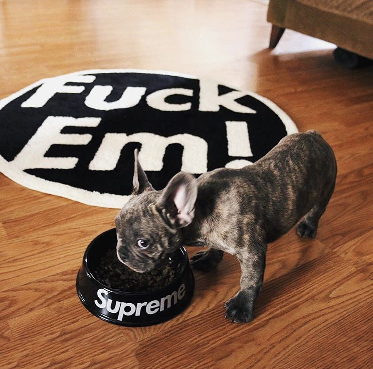 Pupreme Dog Bowl