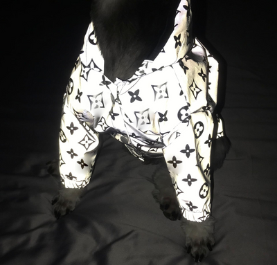 LV Inspired Monogram Reflective Raincoat