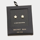 Secret Box _ 14k Gold Dipped Cz Star Stud Earrings