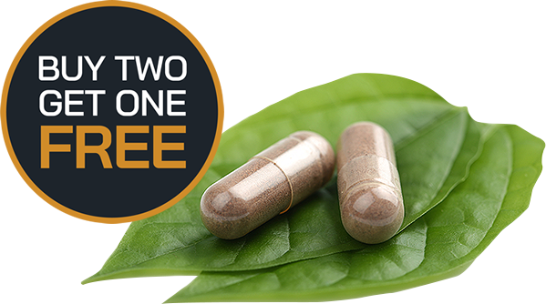 Buy Two TESTO, Get One Free