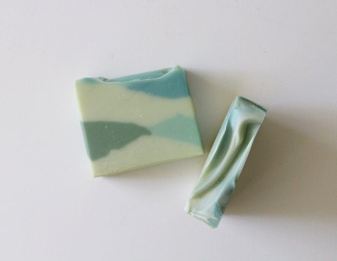 Lush succulent - coconut milk soap