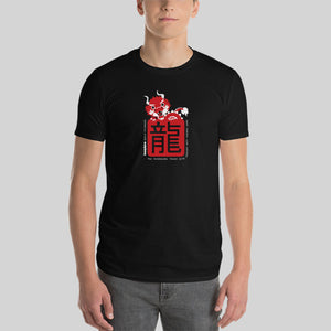 "Year of the Dragon Chinese Horoscope T-shirt - Slim Fit ""CHARACTERS"""