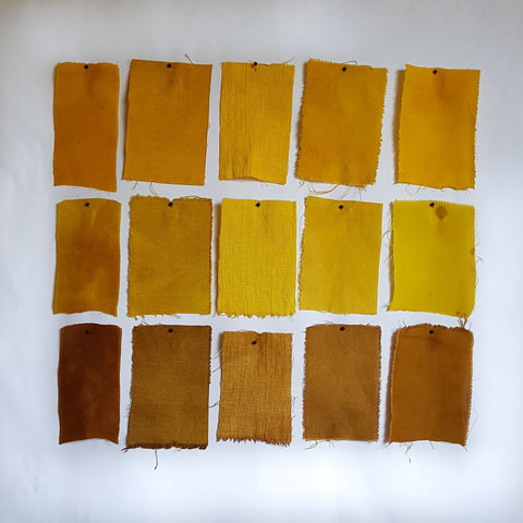 Turmeric Dye Samples