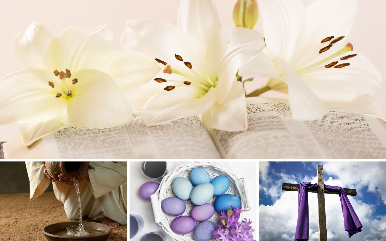 Easter Lily, Water, Eggs, Cloak