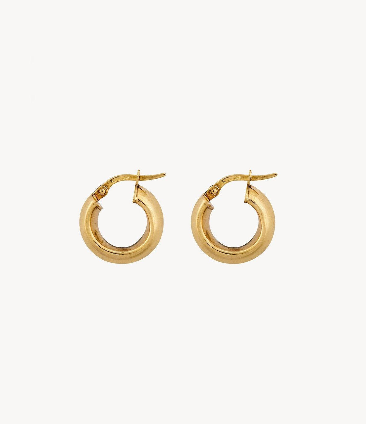 The Round Gold Hoops
