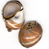 Gold lined seashell pendant with bail. Avg. 28mm. Pkg 1. B15-SHE280