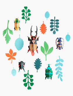 Studio Roof Wall of Curiosities - Beetle Antiquary - Picture Play - The Modern Playroom