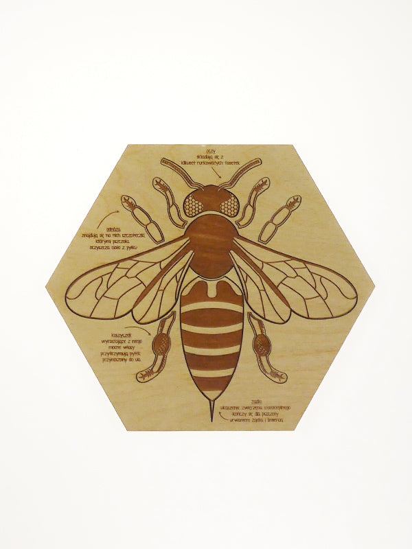 Busy Bee Puzzle
