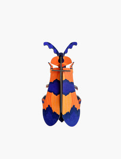 Studio Roof Winged Beetle - Picture Play - The Modern Playroom