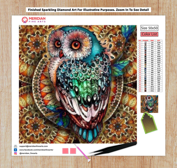Beautiful Owl - Diamond Art Kit
