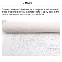 Canvas with unpainted picture for Meridian Paint by Numbers kit